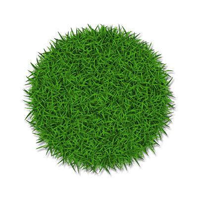 Trawnik powyżej 1500 mkw